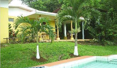 Find low rates and reserve youth hostels in Alajuela